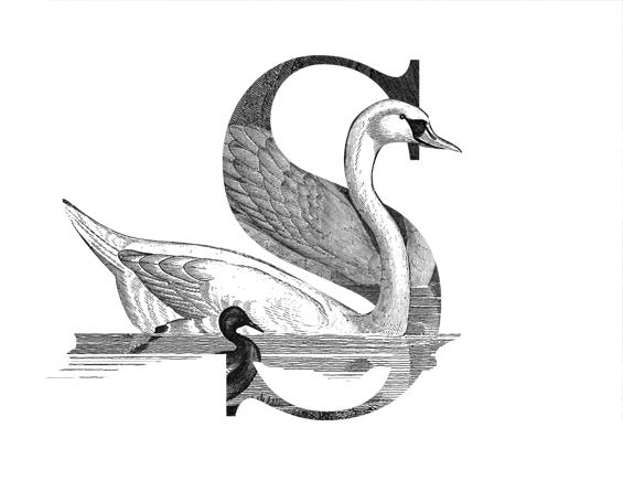 engraving-letter_v1